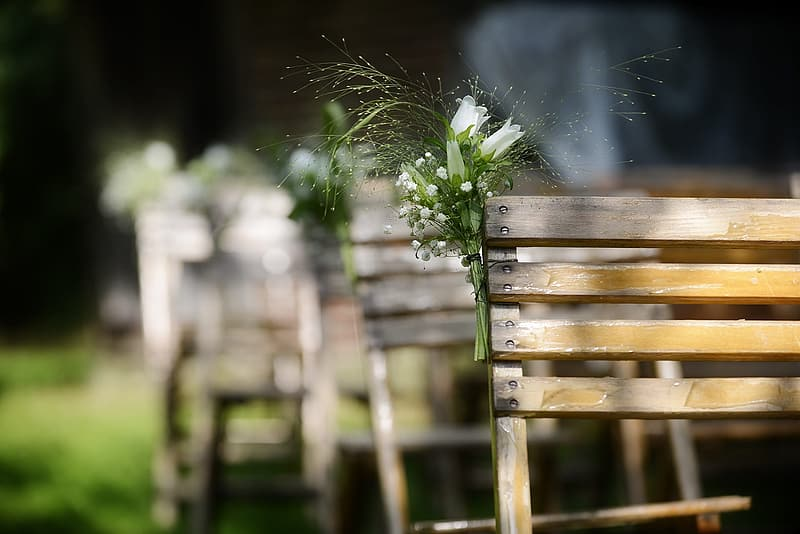 White flowers on wooden bench
