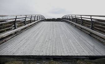 Photography of gray wooden bridge