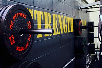 Black weight plates hanged on wall