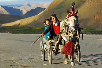 Male and female Mongolians riding horse carriage during daytime
