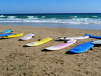 Assorted-color surfboards on sea shore