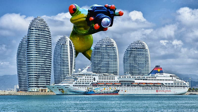 Green frog taking photo of cruise ship