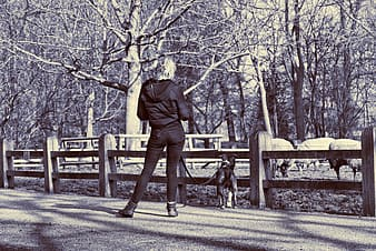 Woman in brown coat walking with black and white dog on road during daytime