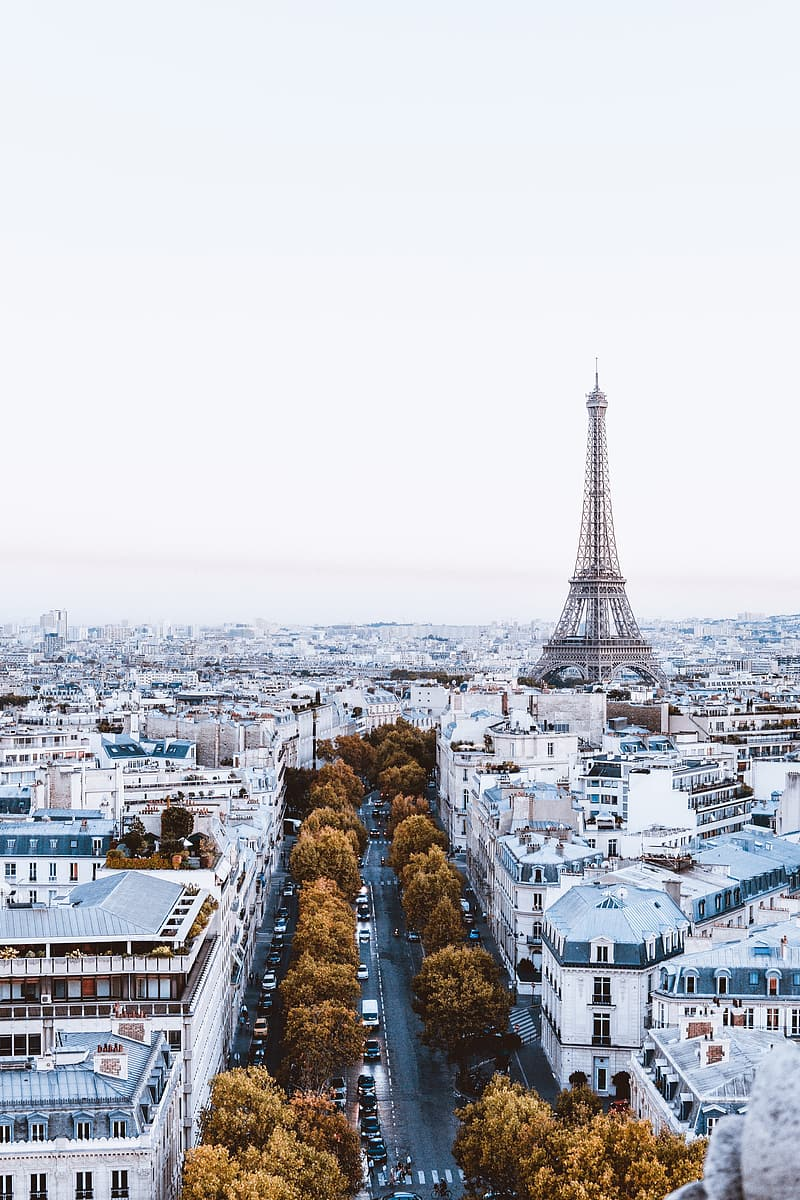 Aerial view of eiffel tower during daytime