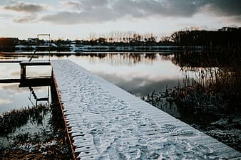 Winter walk by the lake