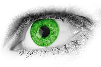 Selective photo of green eye