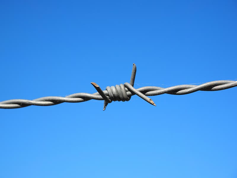 Gray barbed wire