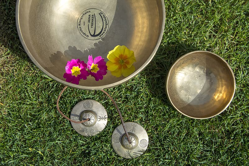 Stainless steel bowl on green grass during daytime