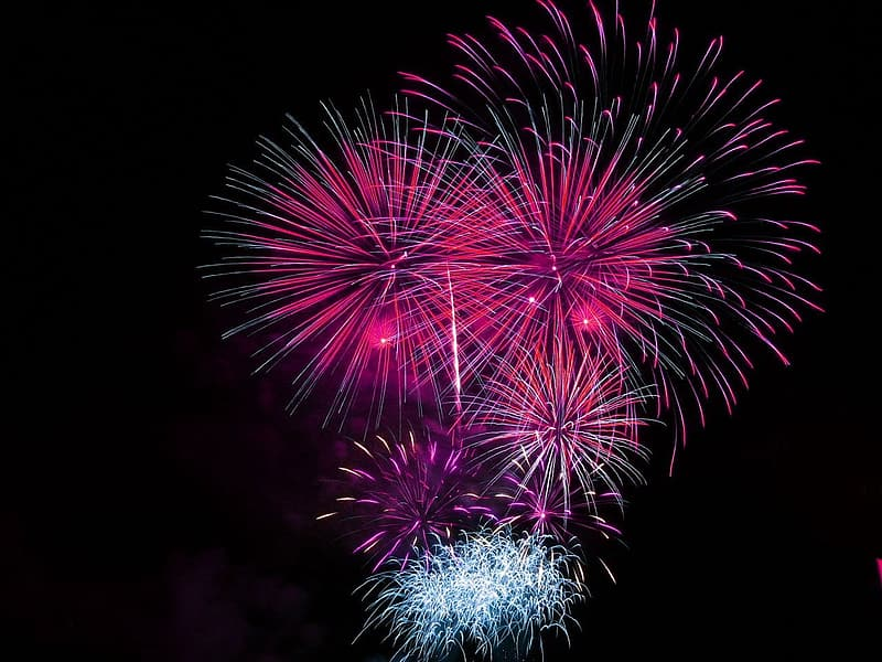 Purple and white fireworks