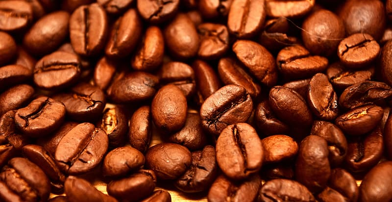 Close up photo of coffee bean lot