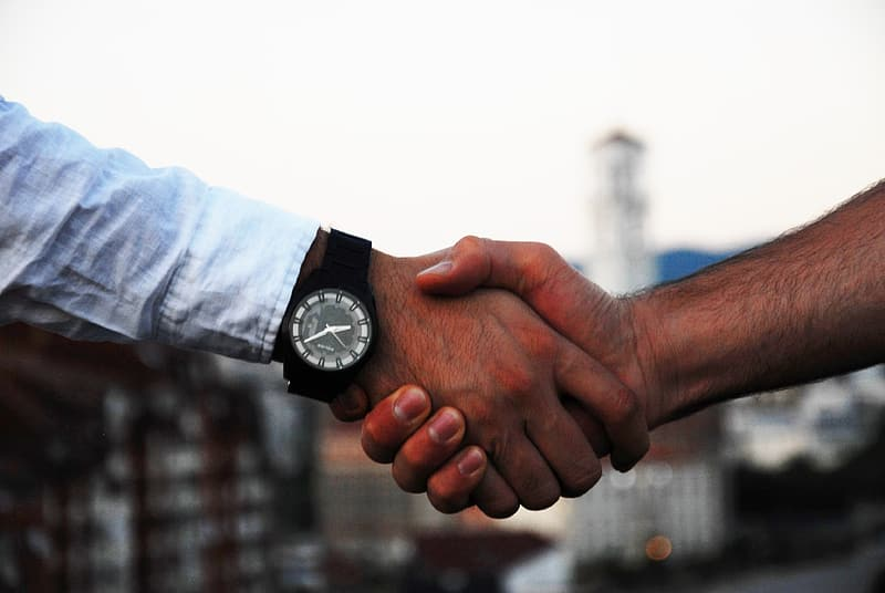 Two persons shaking hands during daytime