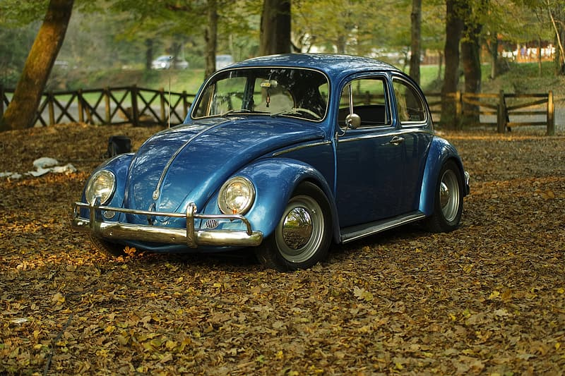 Blue Volkswagen Beetle coupe parked near trees