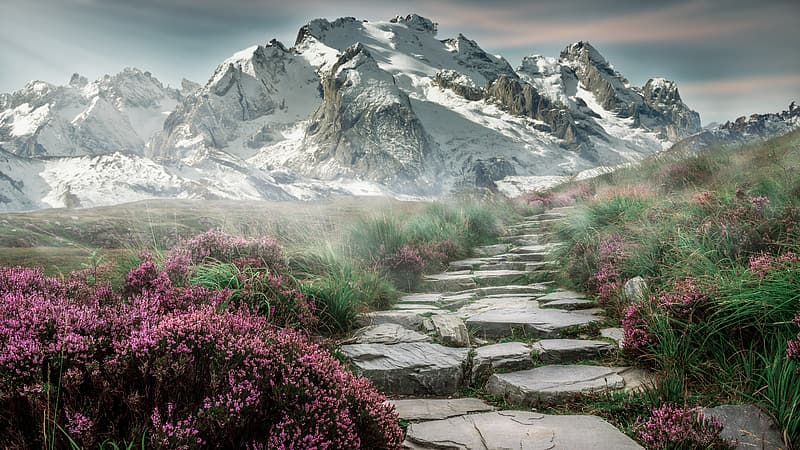 Rocky pathway in front of snowy mountain during daytime