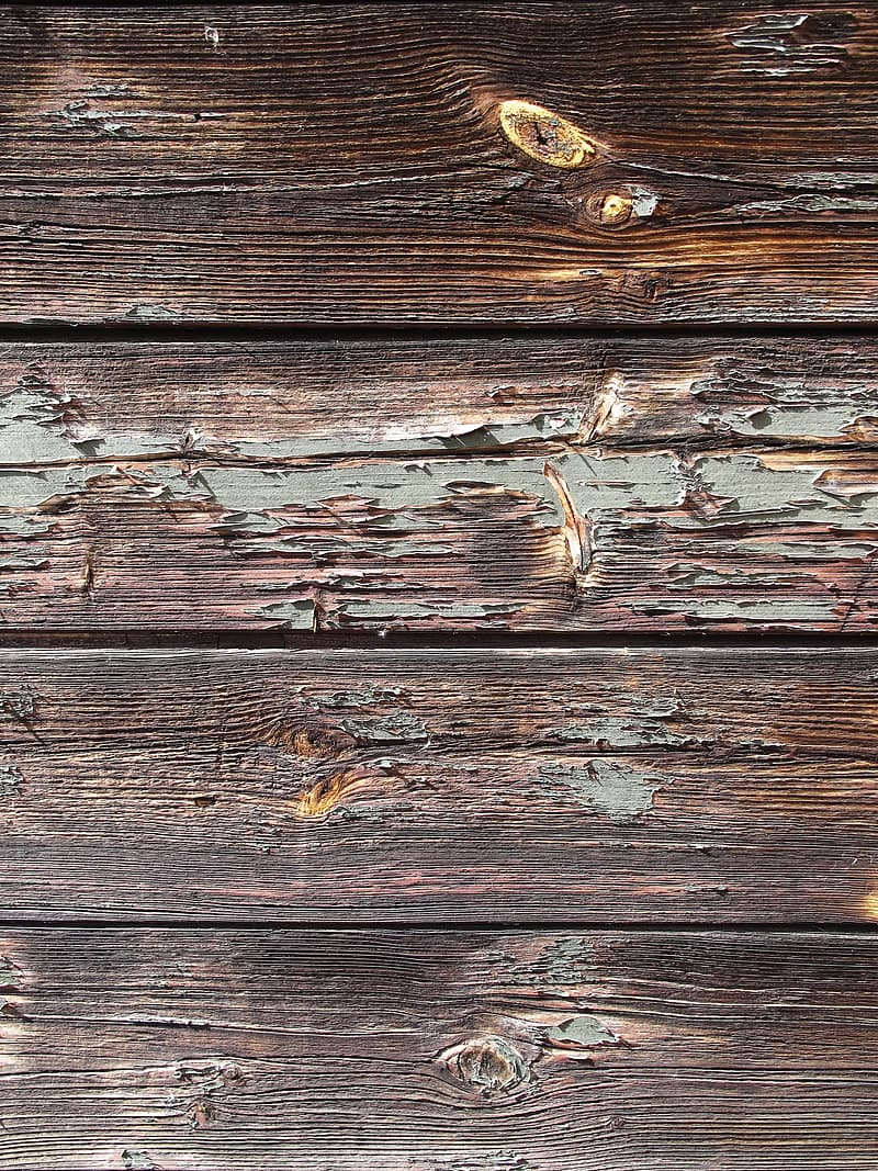 Untitled, wood, boards, panel, wooden wall, facade, old, box, weathered, branches