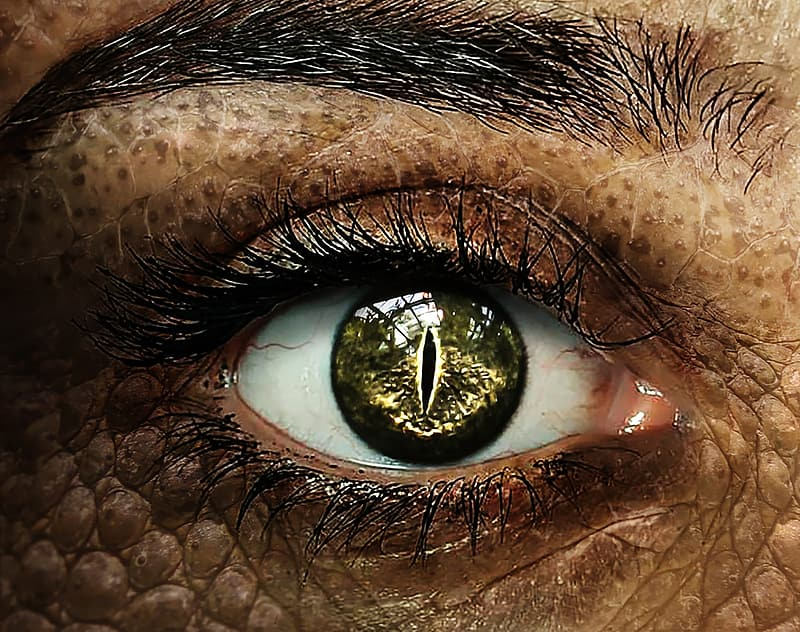 Person with reptile eye close up photo