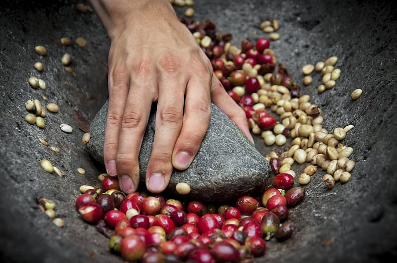 Person grinding red beans