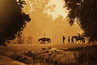 Silhouette of people riding horses on green grass field during daytime