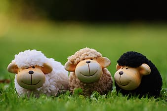 White, brown, and black sheep plush toy on green grass
