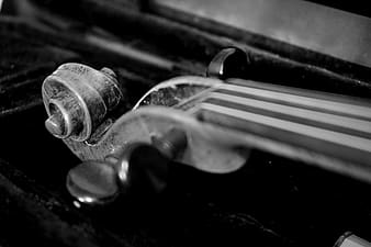 Gray scale photo of musical instrument