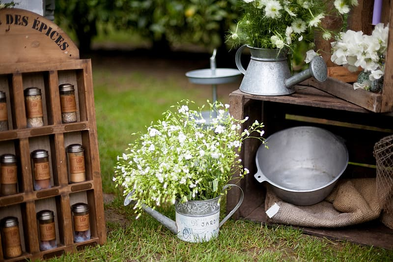 Flower on watering can