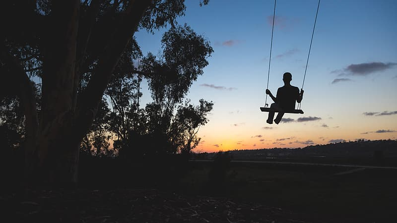 Silhouette of person sitting on swing under tree during sunset