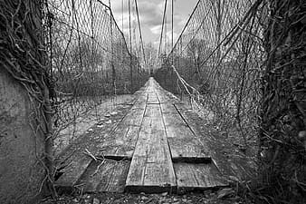 Grayscale photo of wooden bridge