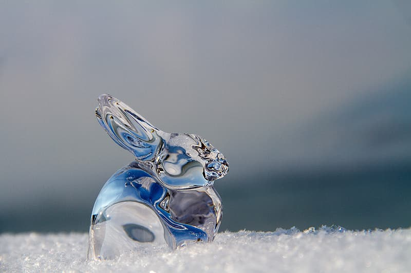Close up photography of crystal rabbit ornament