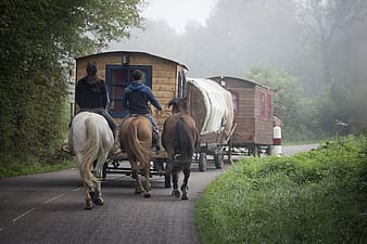 People riding horses while pulling wagons
