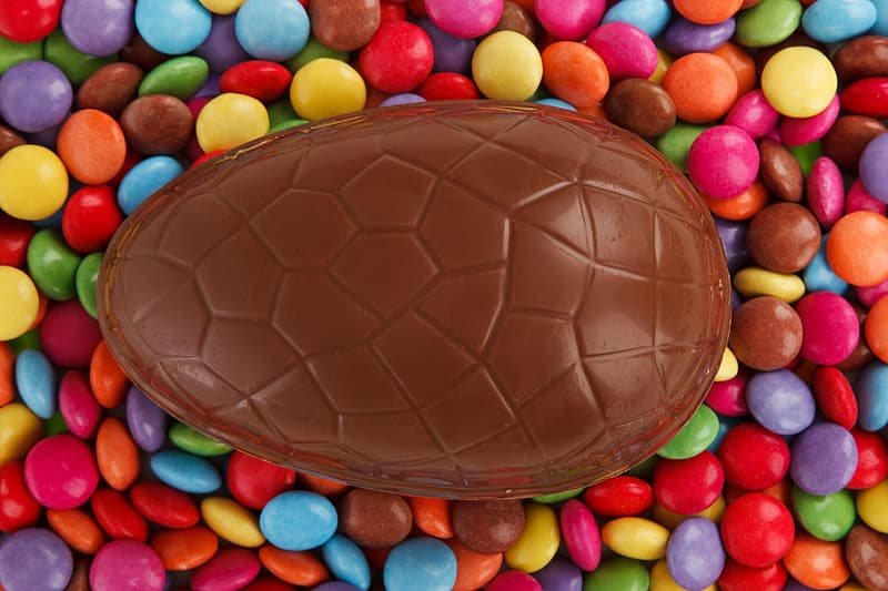 Turtle shell chocolate