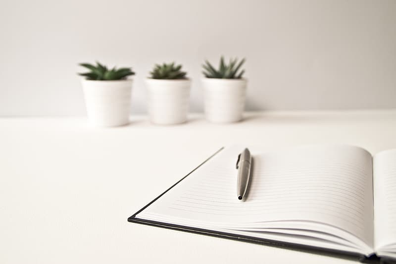 Closeup of click pen on white-page notebook
