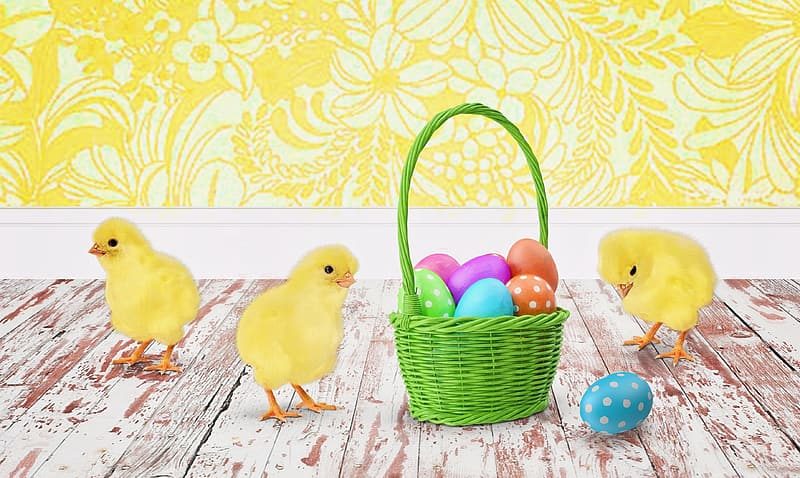 Three yellow chicks beside green basket with easter eggs