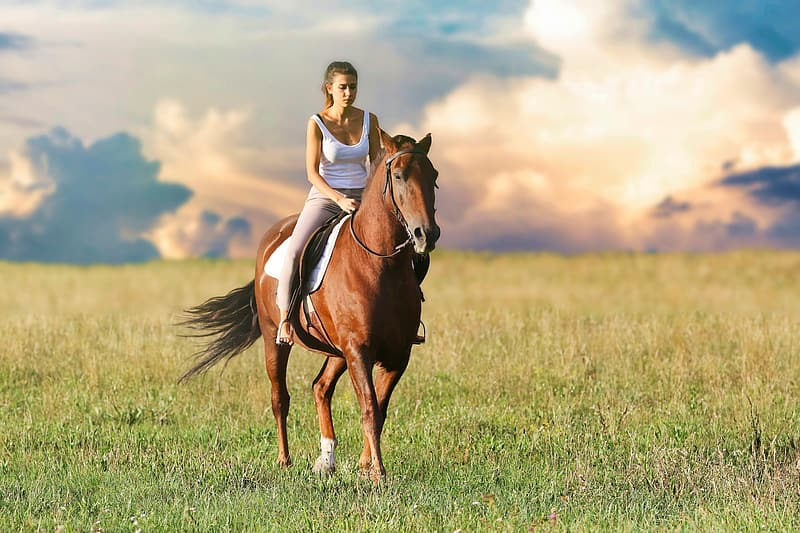 Woman riding horse on green grass field during daytime