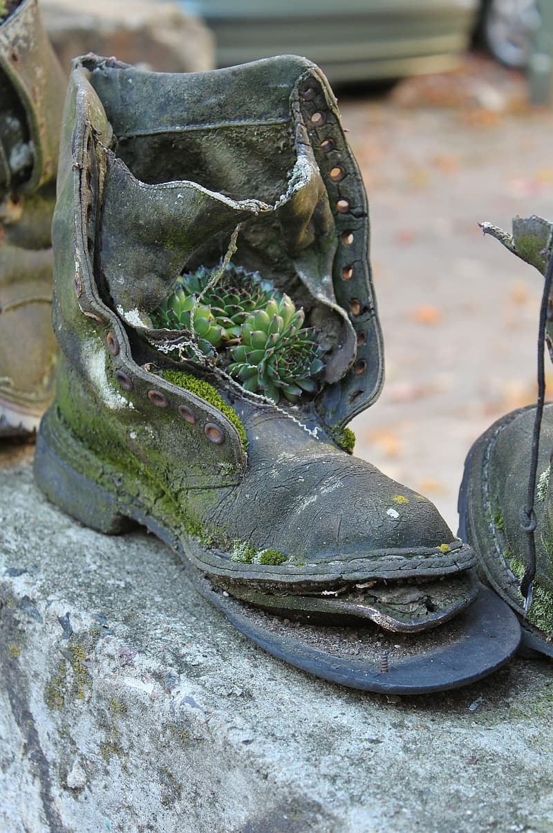 Black and green hiking boots