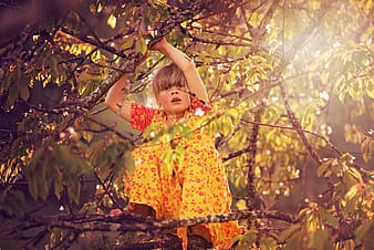 Girl in yellow and red floral dress standing on brown tree branch during daytime