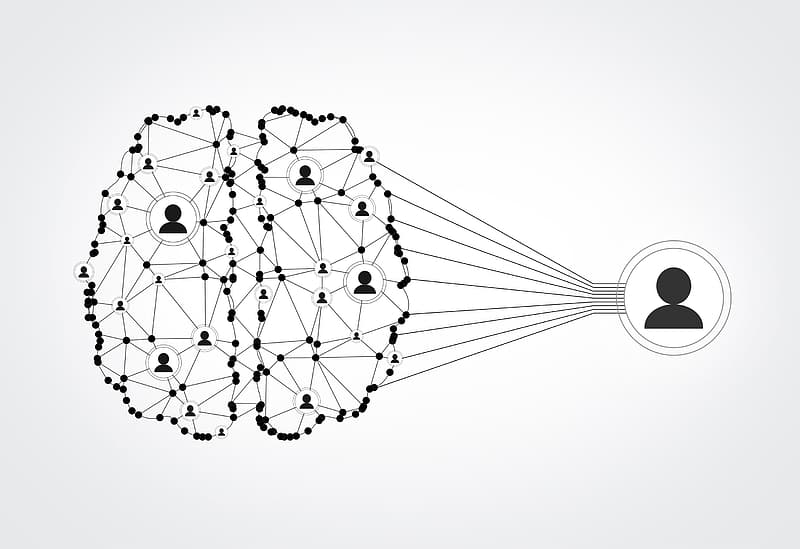 Network of People - Brain Wired to Be Social
