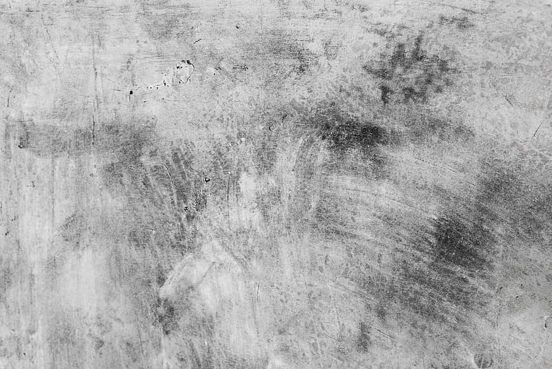 Gray scale photo of grass