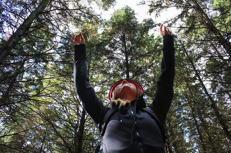 Low angle photo of woman wearing black zip-up hooded jacket raising her two hands above with green leaf trees at daytime