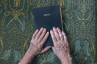 Person holding Bible book