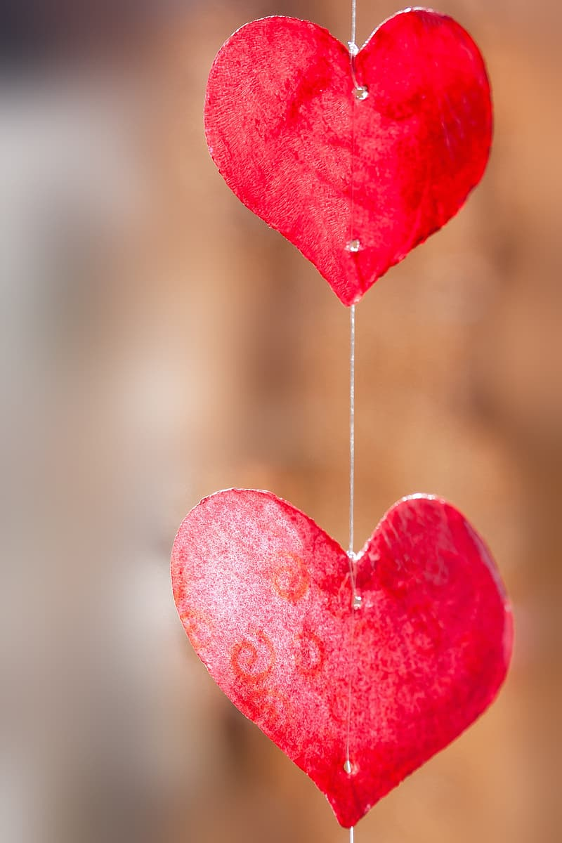 Photography of two red heart shaped paper cutout hanging decor