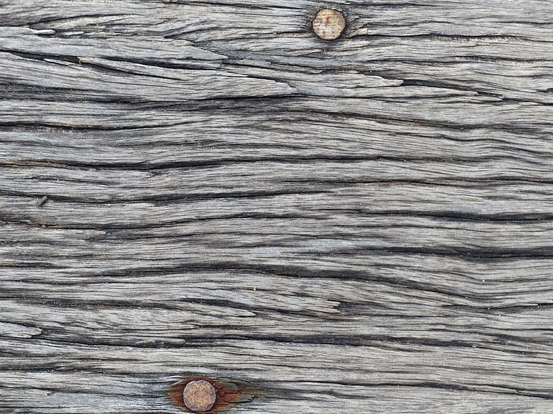 Photography of wood