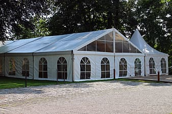 White enclosed canopy tent near trees