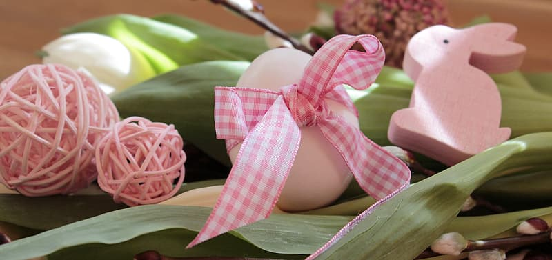 Pink and white checkered ribbon on persons lap