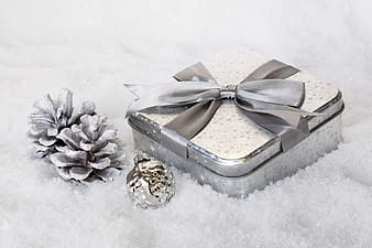 Square white and gray case and gray pine cones
