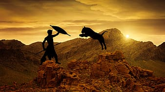 Silhouette of man fighting animal under golden sky