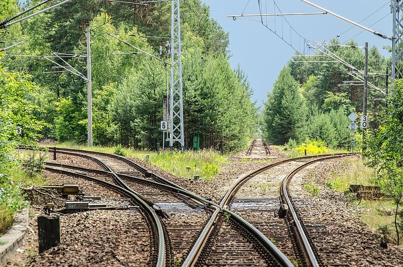 Gray steel train rail in the forest during daytime