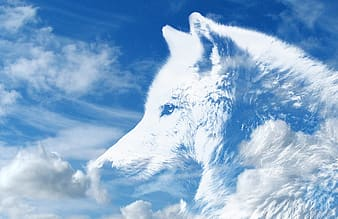 White wolf clouds