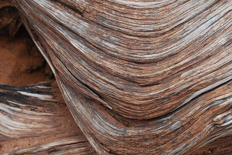 Closeup photography of ancient wood grooves