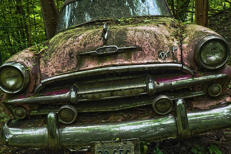 Abandoned classic car on forest