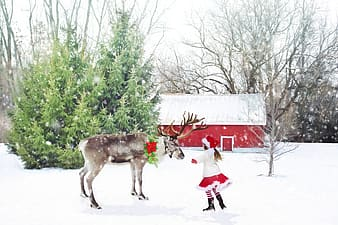 Girl with white and red Santa costume on snow hugging reindeer