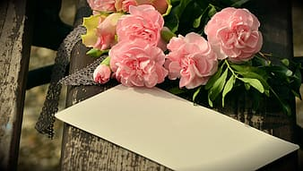 Pink flowers beside white paper
